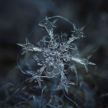 este-uimitor-cum-arata-fulgii-de-zapada-la-microscop-foto_size4